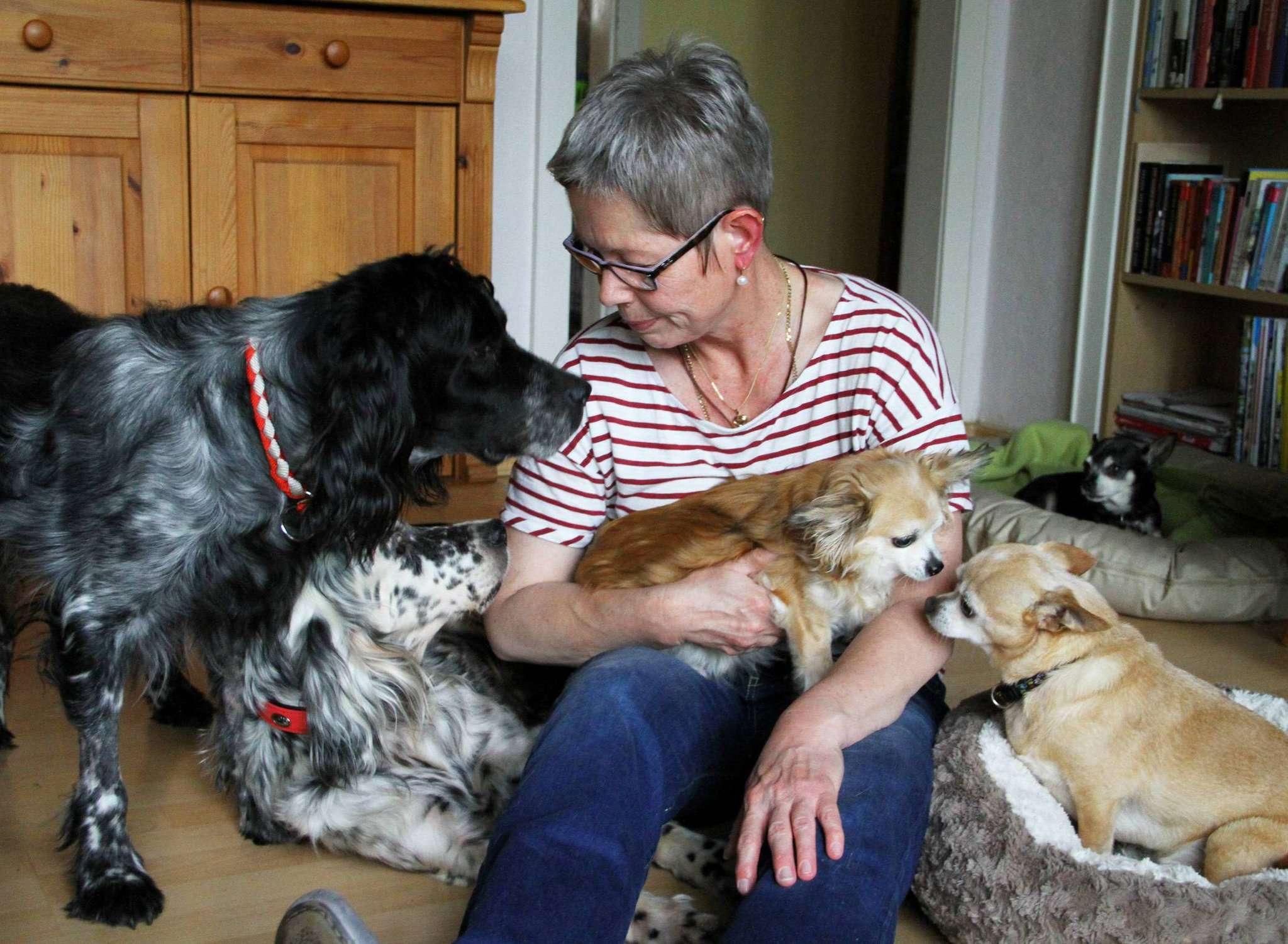 Streicheleinheiten gibt es im Hause von Heike Landwehr-Johannsen genug: Die Hellwegerin ist Tierschützerin und kümmert sich um die Pflege von fünf Hunden. Fotos: Antje Holsten-Körner