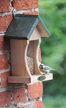Nabu gibt Tipps zur Winterfütterung von Vögeln