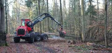 Forstamt pflanzt Mischwälder fürs Klima