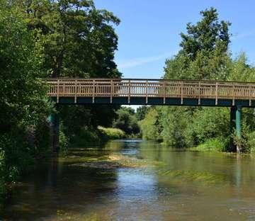Brücken verbinden  und helfen die Artenvielfalt zu bewahren