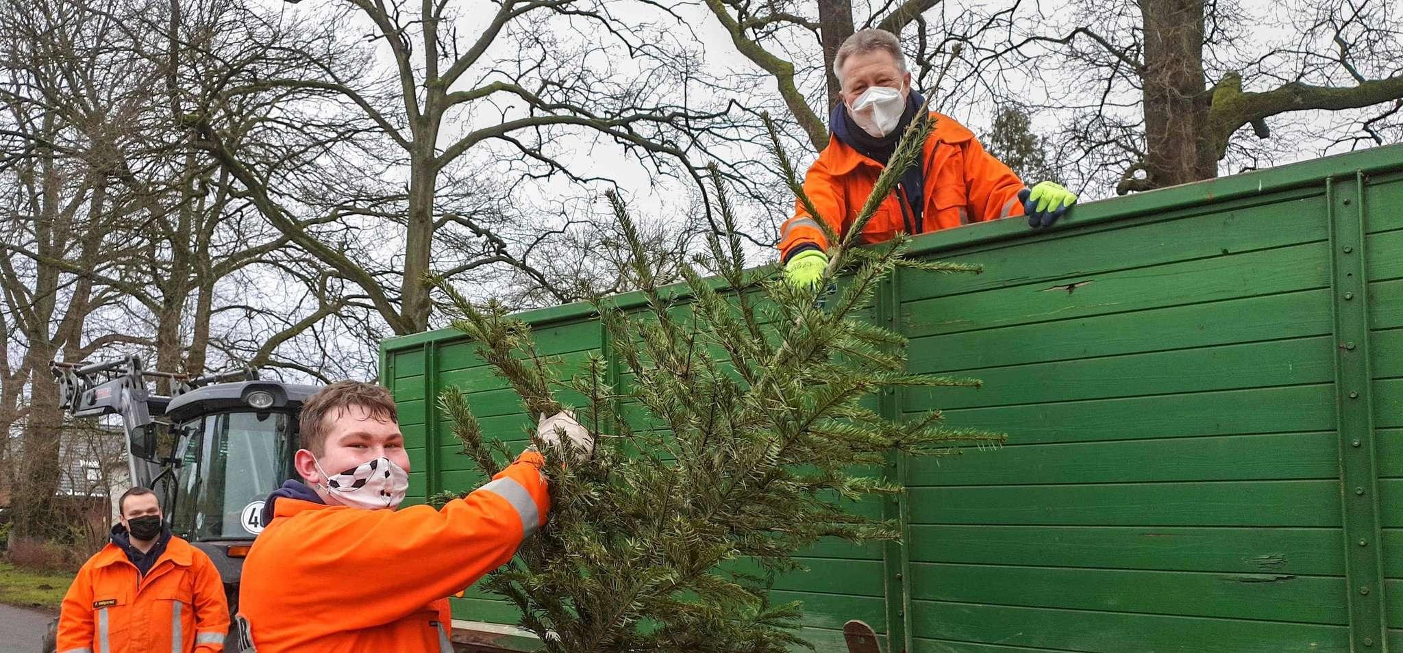 Die Feuerwehr sammelte die Tannenbäume ein u2013 unter Einhaltung der Corona-Richtlinien. Foto: Tobias Woelki