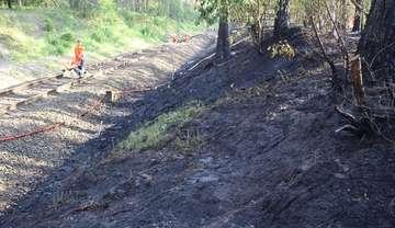 Böschung in Flammen  Sottrumer und Botheler rücken aus