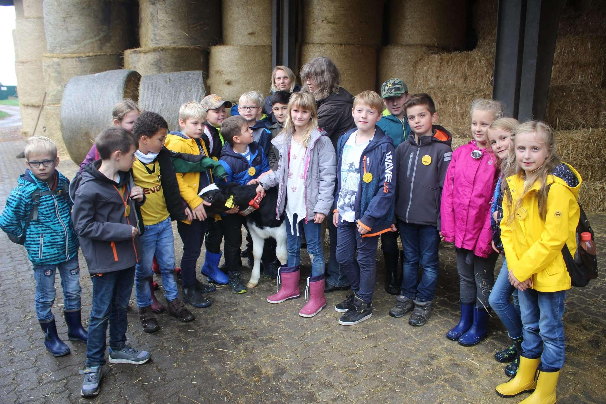 Landwirtin Karin Lindhorst zeigte den Kindern das Kalb Felix, das daraufhin besonders viele Streicheleinheiten bekam. Foto: Henning Leeske