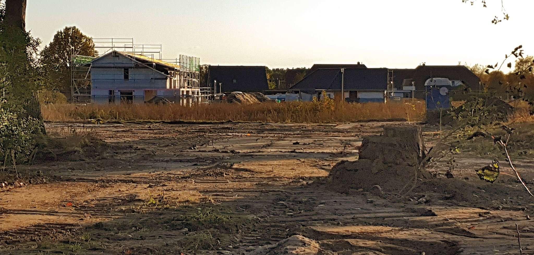 Im neuen Botheler Baugebiet gibt es noch einige freie Plätze für Familien. Foto: Tobias Woelki