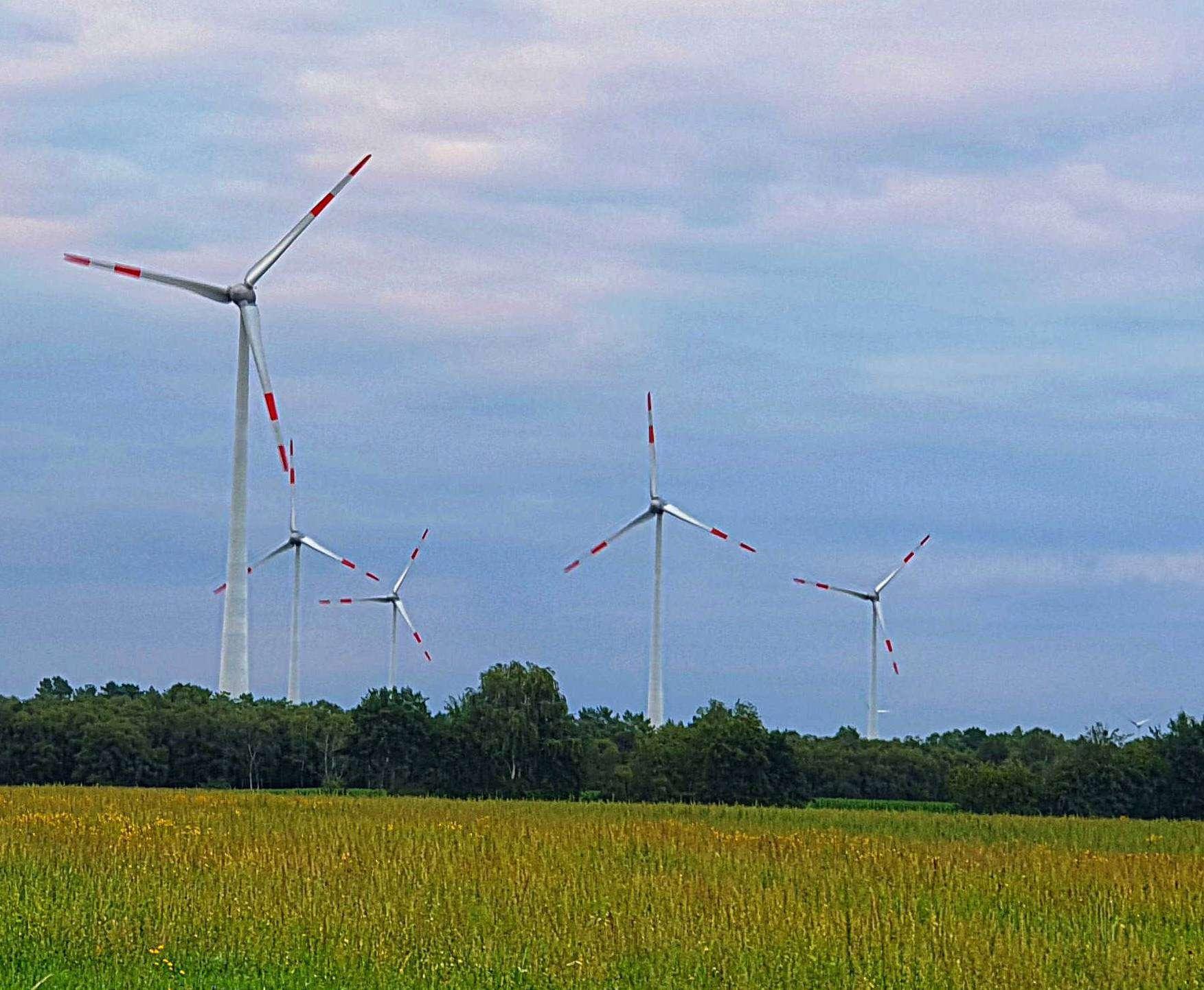Der Windpark zwischen Brockel und Bartelsdorf. Foto: Tobias Woelki
