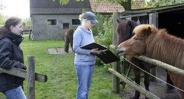 Pferdeversicherungsverein zählt zu ältesten Vereine der Börde