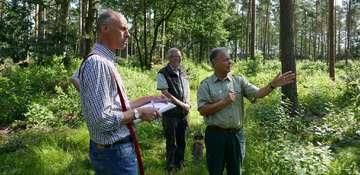 Forstamt Rotenburg erfüllt Standards der Forstzertifizierung