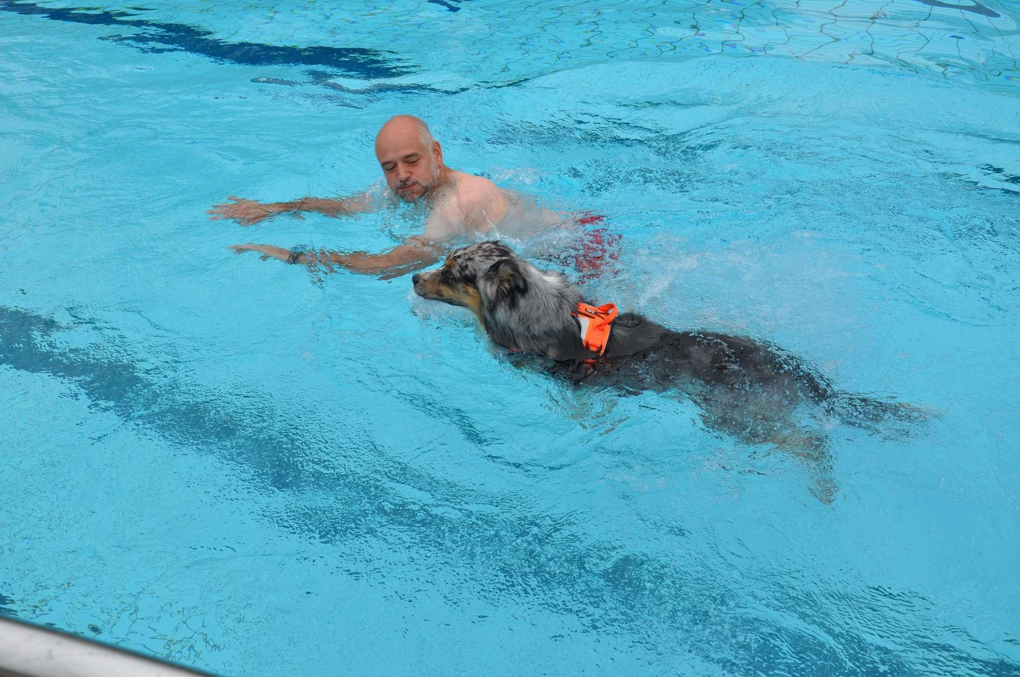 Hund und Herrchen gehen am Sonntag gemeinsam baden.