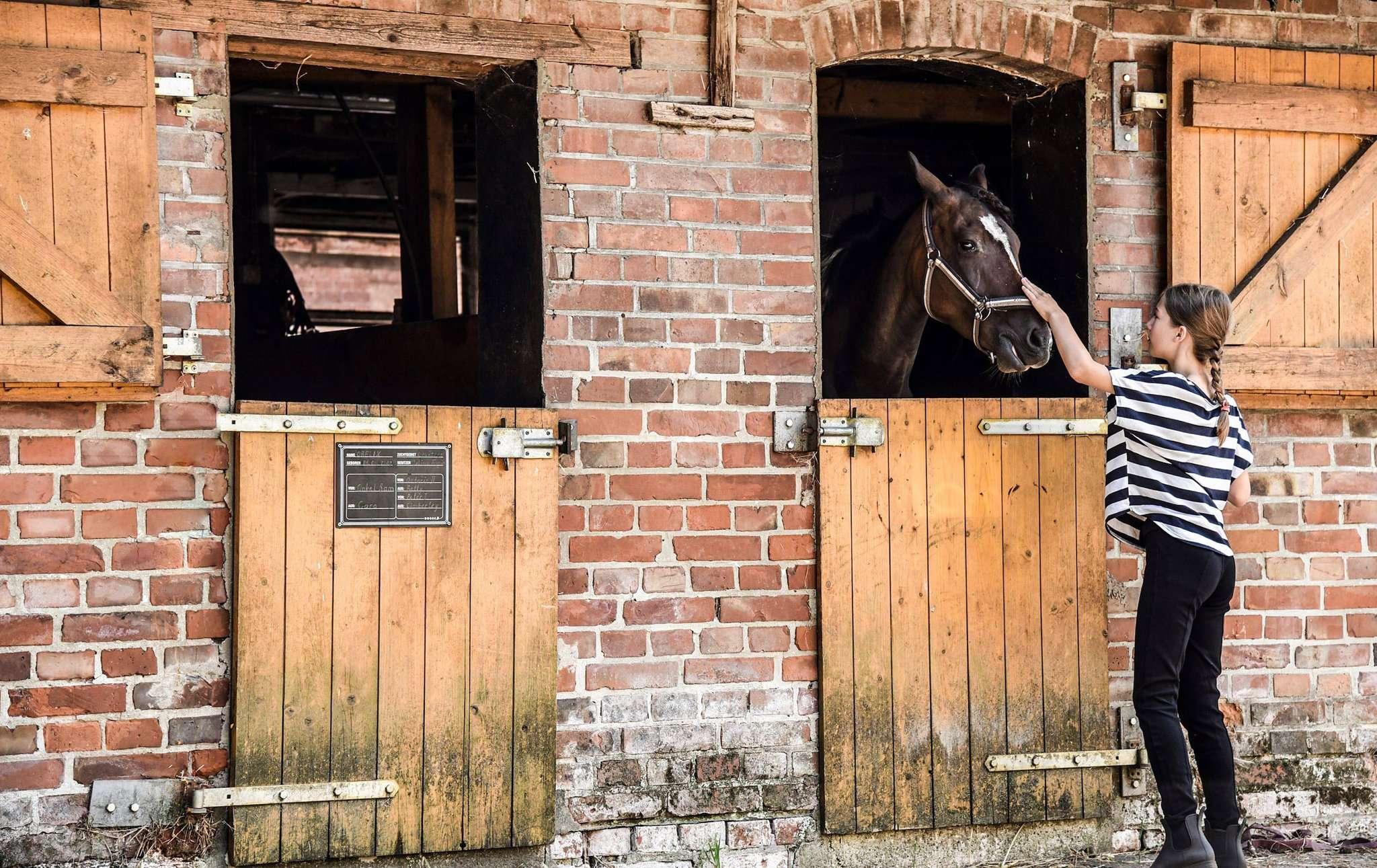 Das Glück der Erde liegt für sie auf dem Rücken der Pferde: Lilly Strathmann hat ihre Schwester Milla auf einem Pferdehof in Bothel fotografiert.