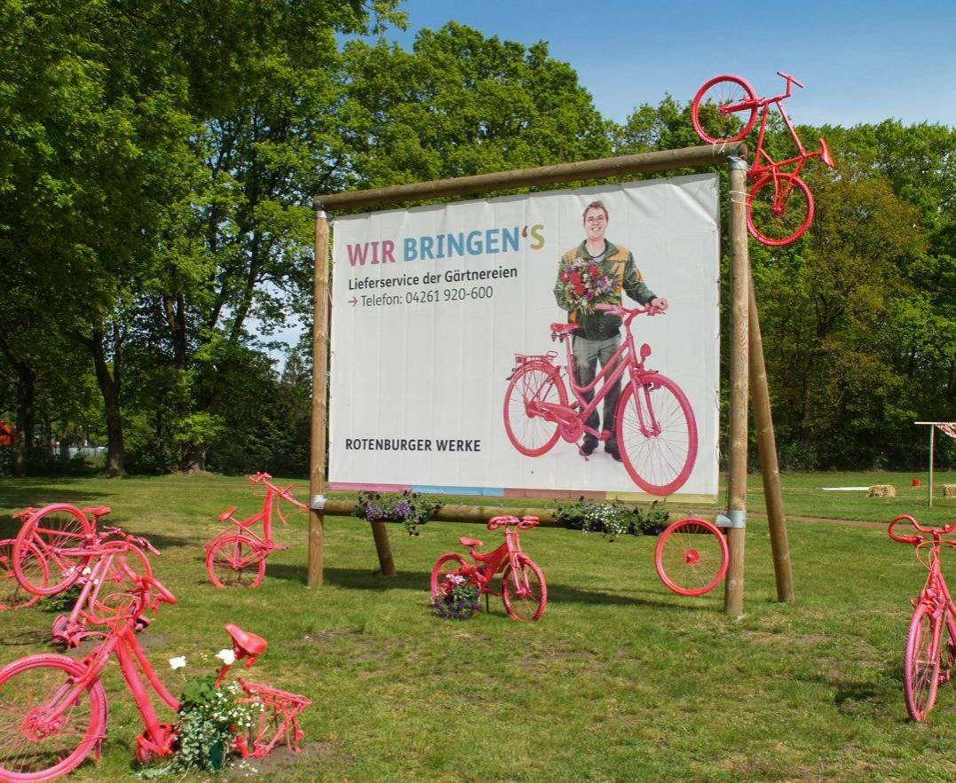Die pinken Fahrräder an der Verdener Straße werben für den neuen Lieferdienst der Gärtnerei. Foto: Sünje Lou00ebs