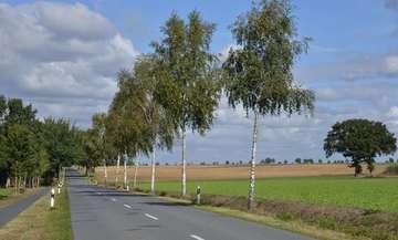 Naturräumliche Gliederung im norddeutschen Tiefland  ein Selbsttest  Von Christiane Looks