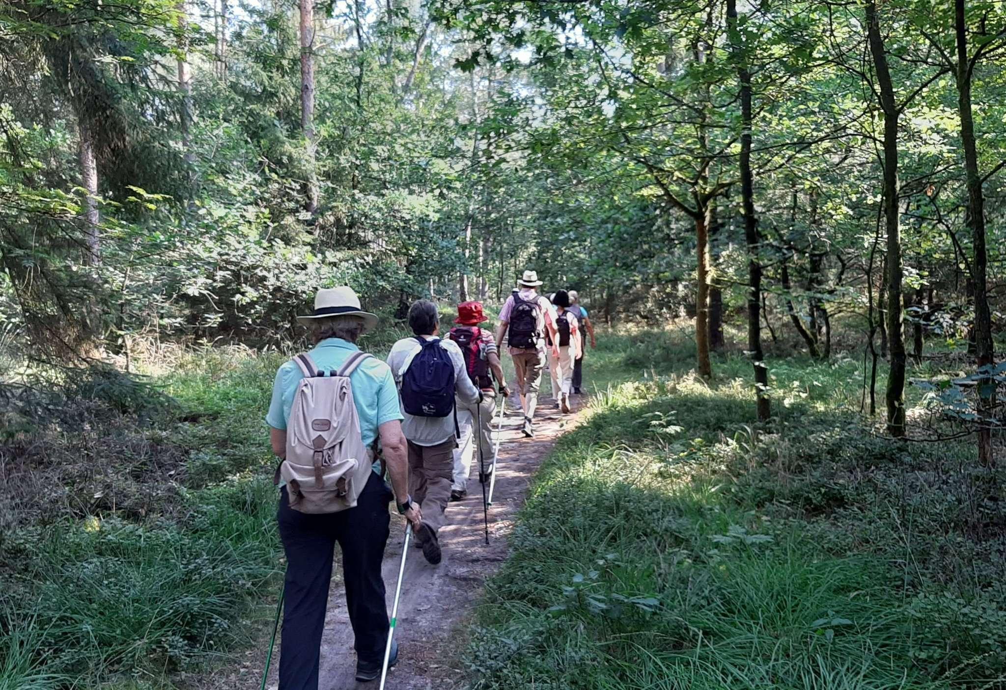 Wandern in der Natur stärkt die Muskeln und sorgt für Entspannung.