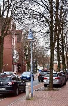 Stadt fällt zehn Robinien in der Goethestraße