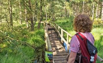 Serie Dört Moor Schnack  Nordpfad steht zur Wahl zum schönsten Wanderweg  Von Dennis Bartz