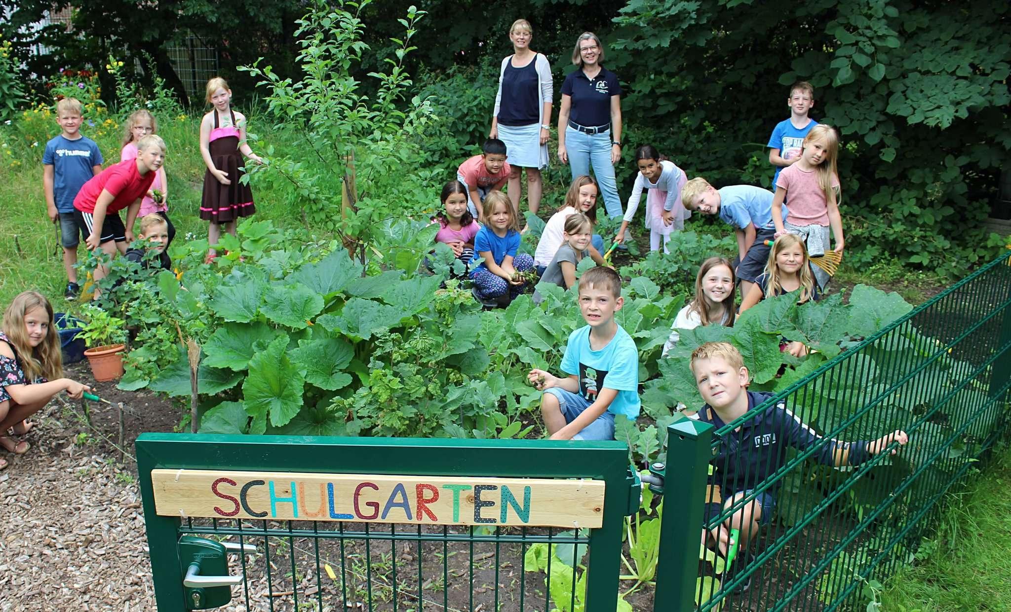 Die Kinder der Klasse 1b sind regelmäßig im Garten und helfen fleißig mit, damit alles wächst.  Foto: Ann-Christin Beims
