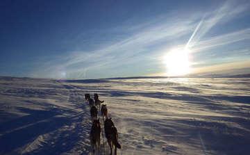 Volkhard Jürgens reist mit dem Hundeschlitten durch Schweden  Von Nina Baucke