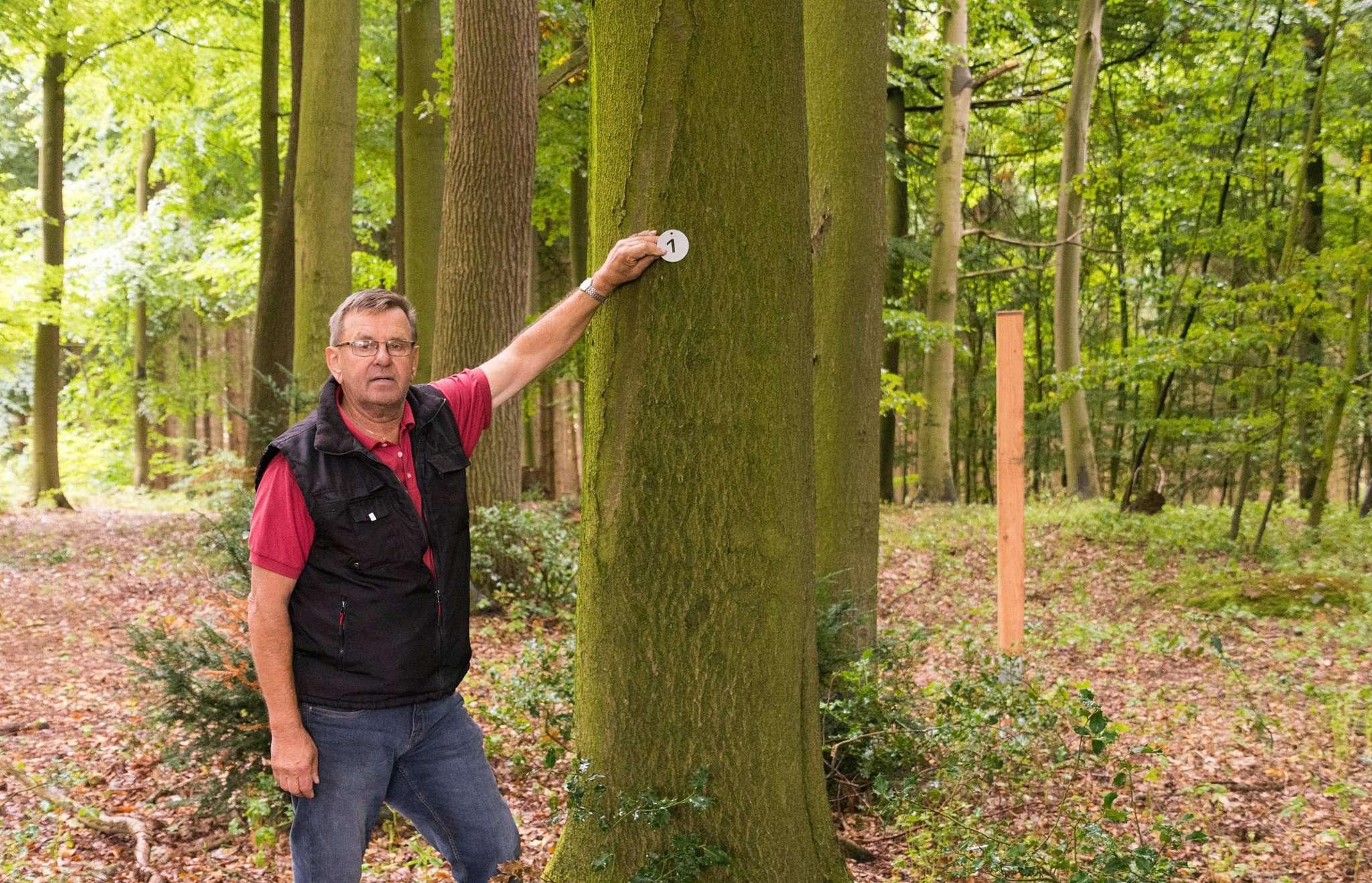 Jeder Baum auf dem Waldfriedhof ist mit einer Nummer aus Aluminium versehen, erläutert der Vorsitzende des Realverbands, Heino Dreyer. Foto: Klaus-Dieter Plage