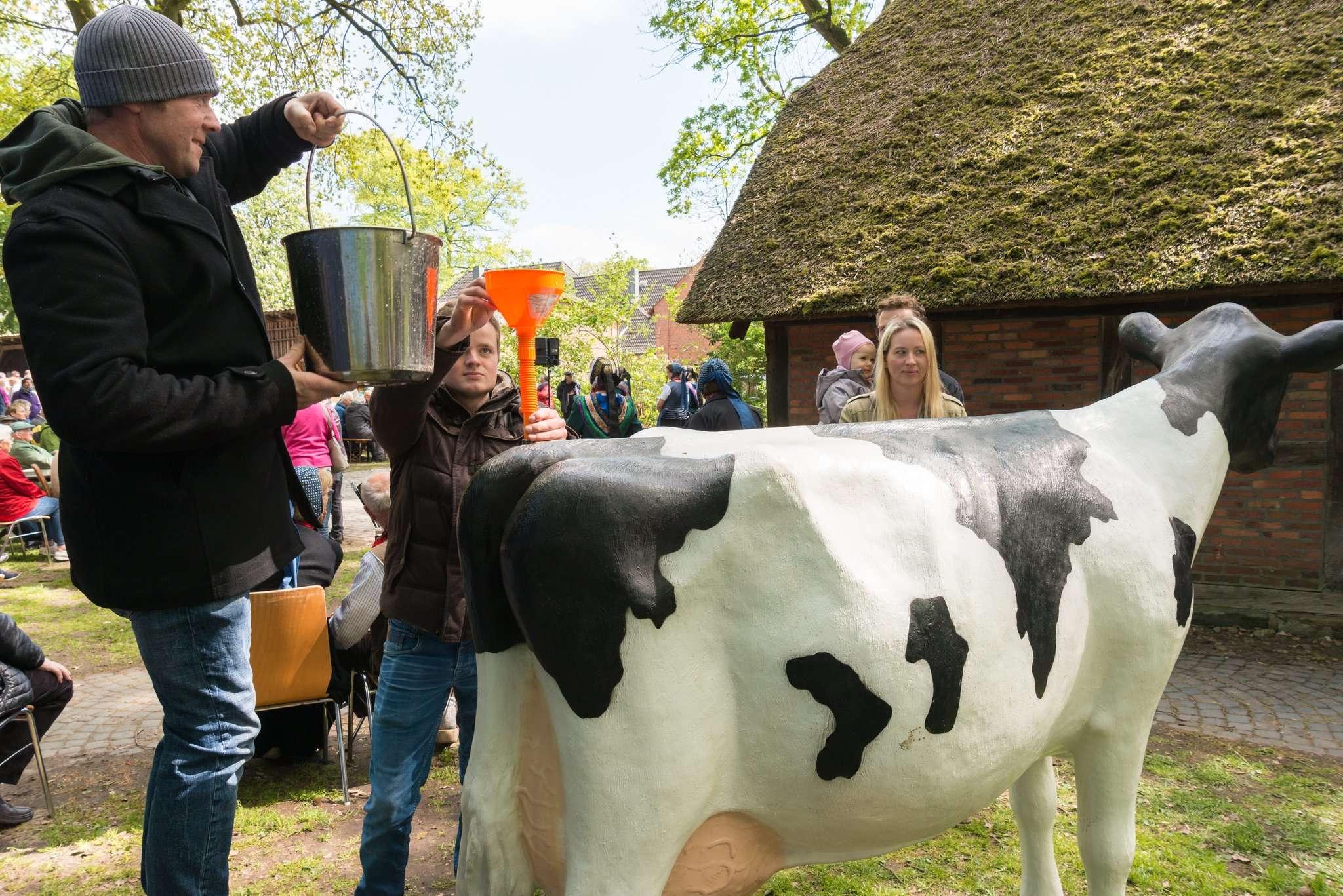Melken mal anders herum. Hier wird die Kuh betankt. Foto: age