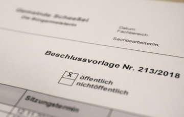 Gemeinde Scheeßel bezieht Stellung zur Baumfällung