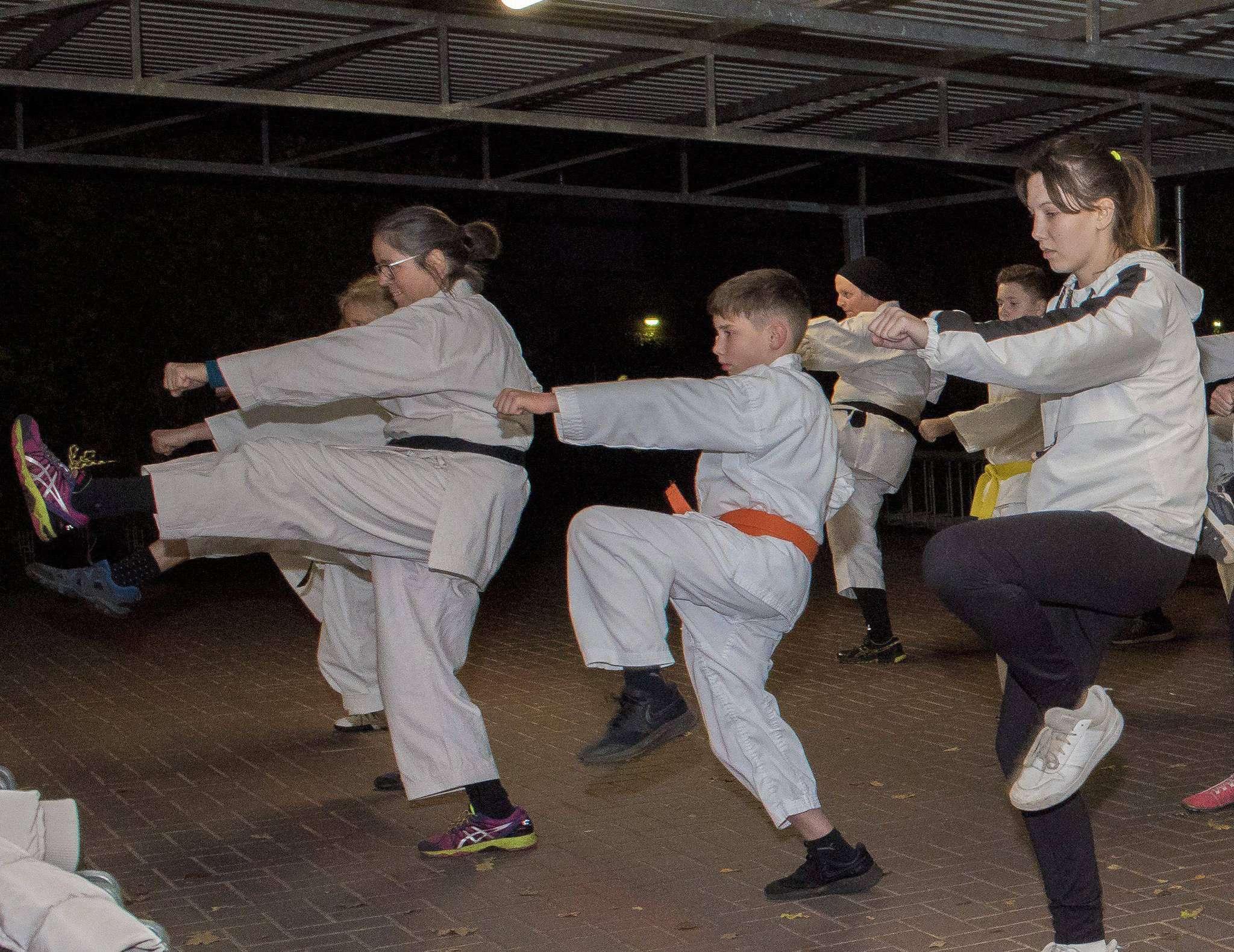 Beim Training an der frischen Luft beweisen die Karateka des TV Scheeßel nicht nur Kreativität, sondern auch Durchhaltevermögen. Foto: Ulla Heye