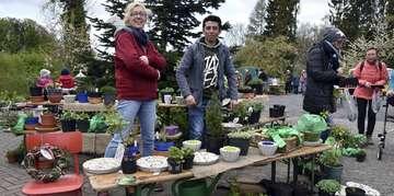 ChristusGemeinde Garten und Staudenmarkt gut besucht
