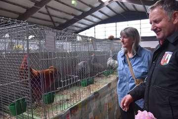 Geflügelausstellung lockt viele Besucher
