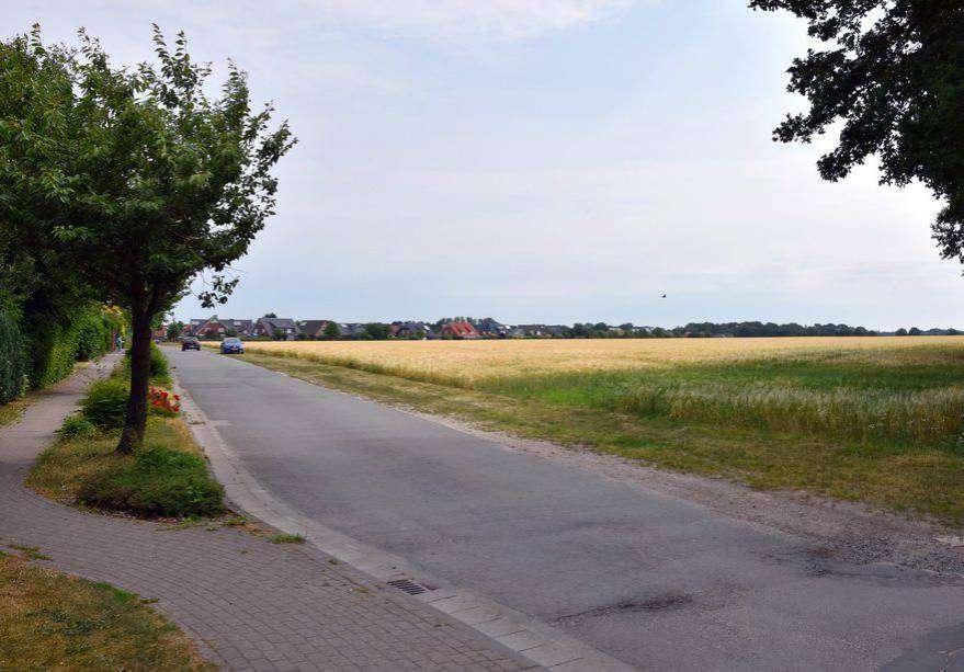 An der Stuhmer Straße soll das Baugebiet abschnittsweise erschlossen werden.  Foto: Heidrun Meyer