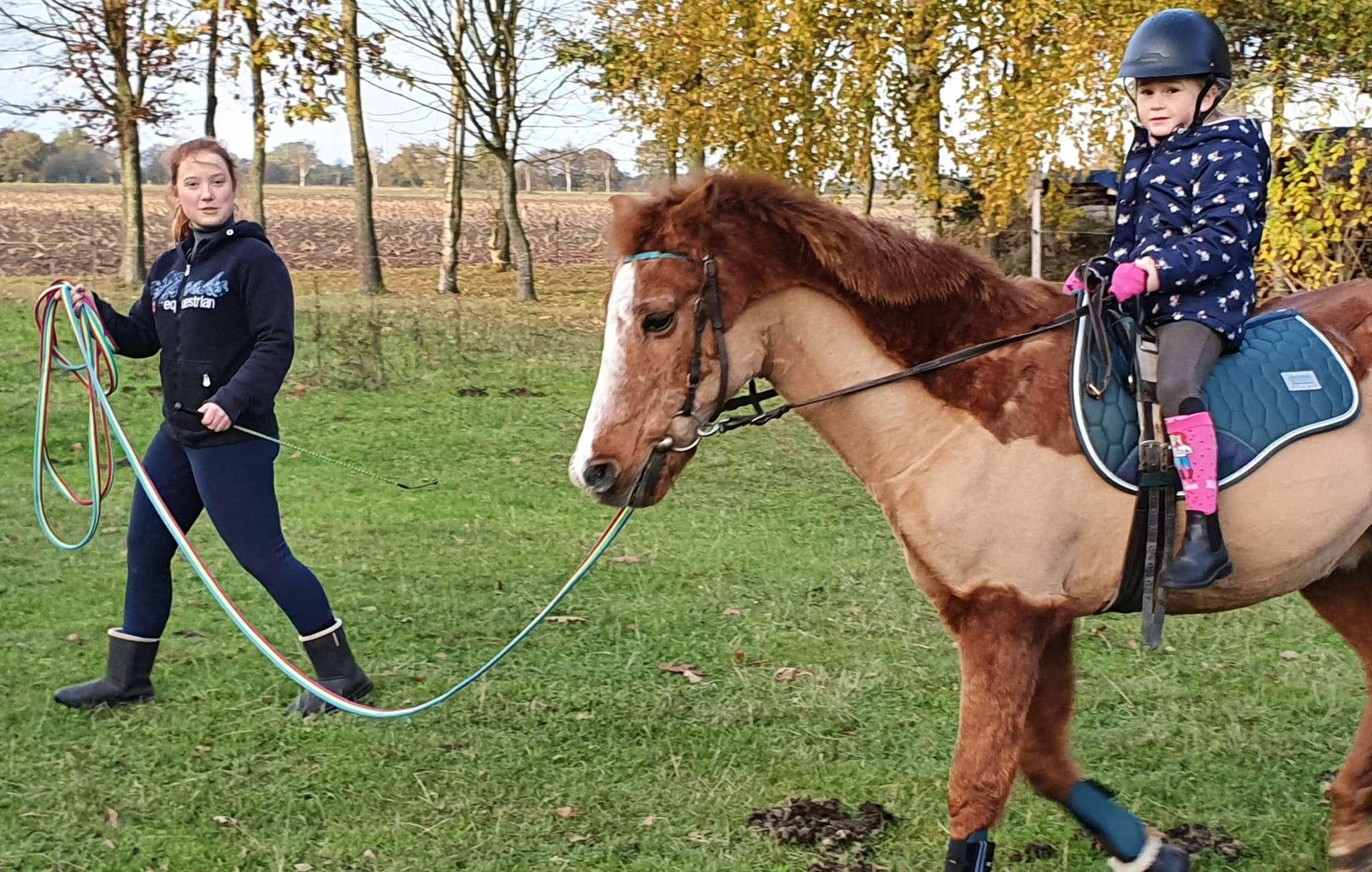 Antonia betreut Goldi und hat immer wieder Reitkinder zu Gast, die mit dem Pony ihre Reitstunden absolvieren. Fotos: Klaus Müller