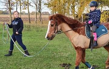 33jähriges Pony ist der heimliche Star von Vierden