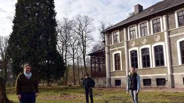 Umfangreiche Baumpflegearbeiten auf dem Klostergut