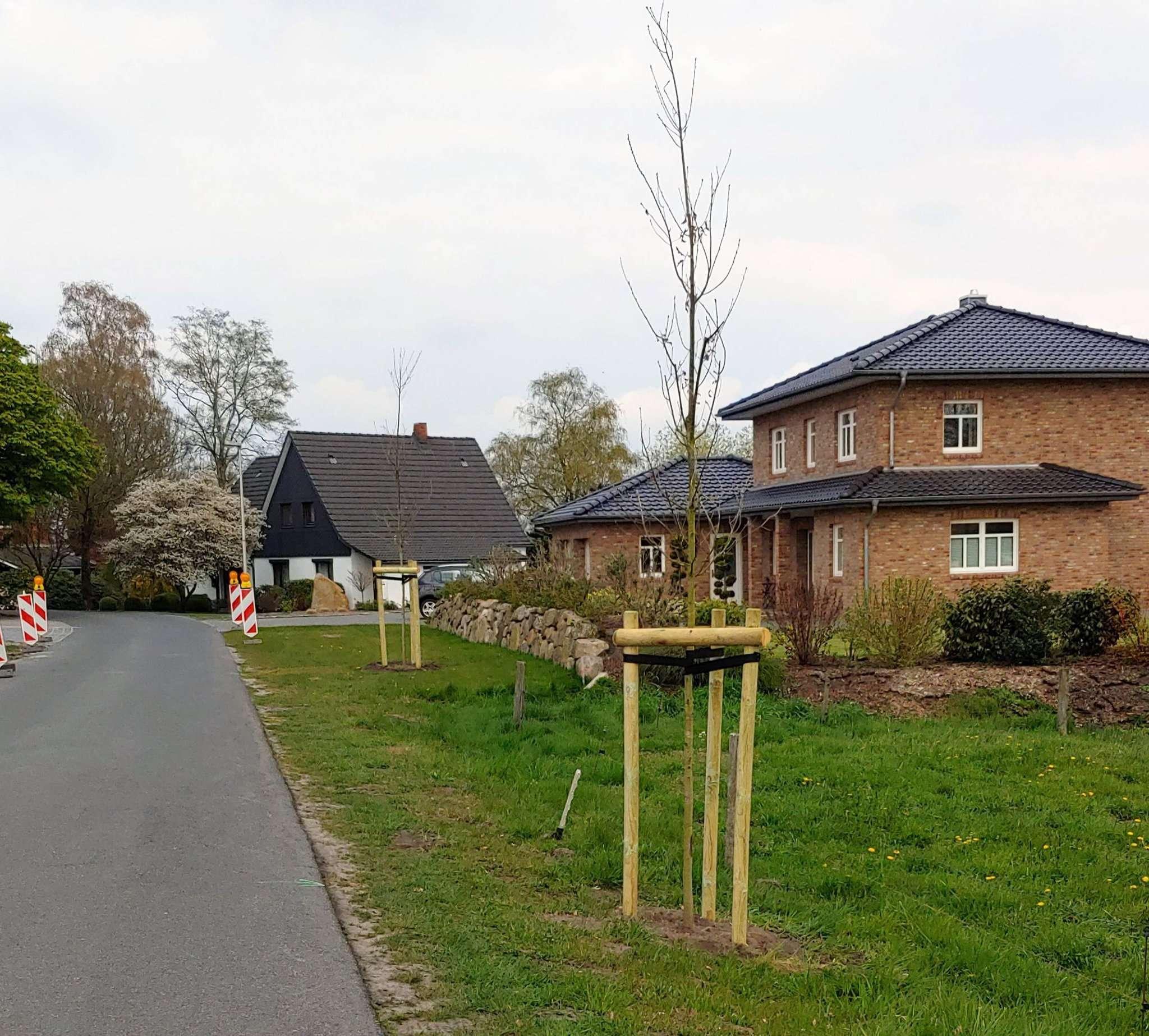 Zwei neue Eichen wurden auch im Bereich Deepenhorn gepflanzt.