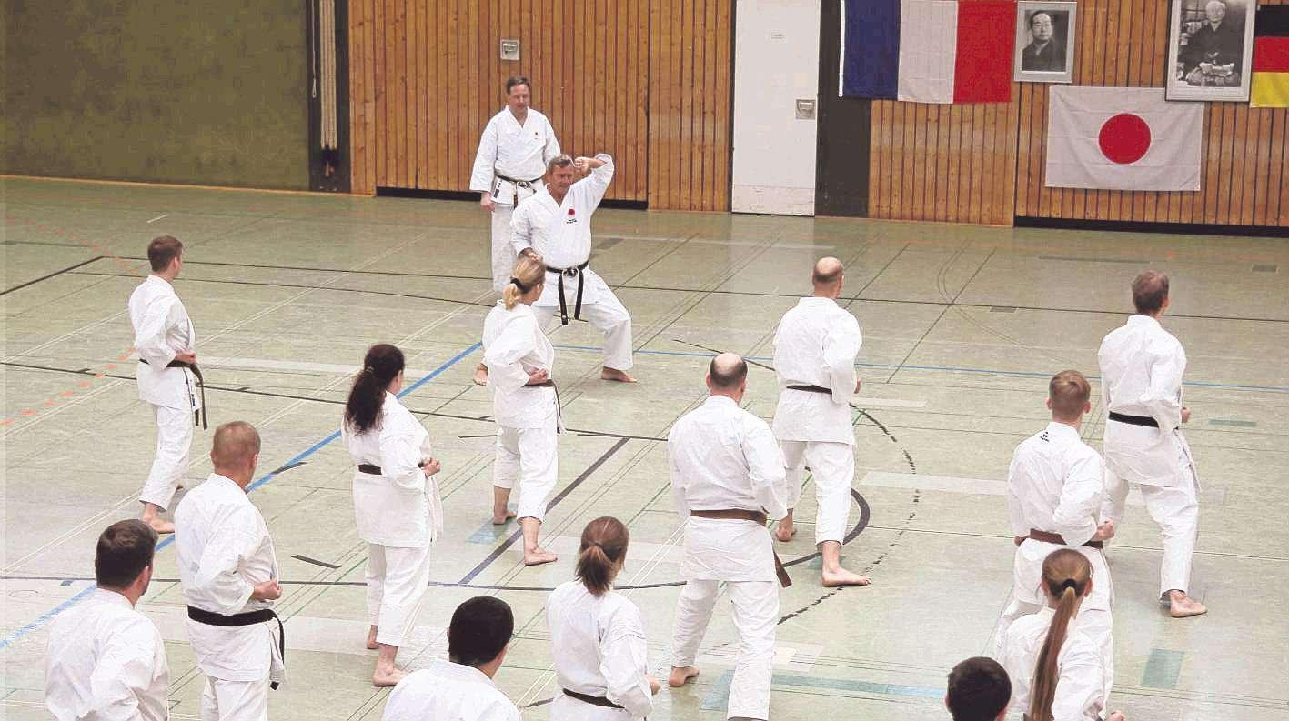 Beim Karate-Lehrgang mit Jean-Pierre Fischer (Mitte oben) ging es nicht nur um Bewegungsabläufe und Techniken, sondern auch um Disziplin und Etikette.