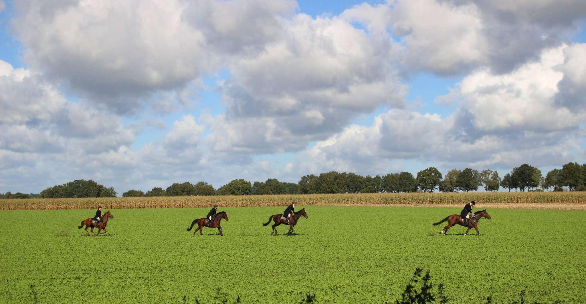 Bei bestem Wetter zogen die Teilnehmer der Schleppjagd mit ihren Pferden über die Felder.
