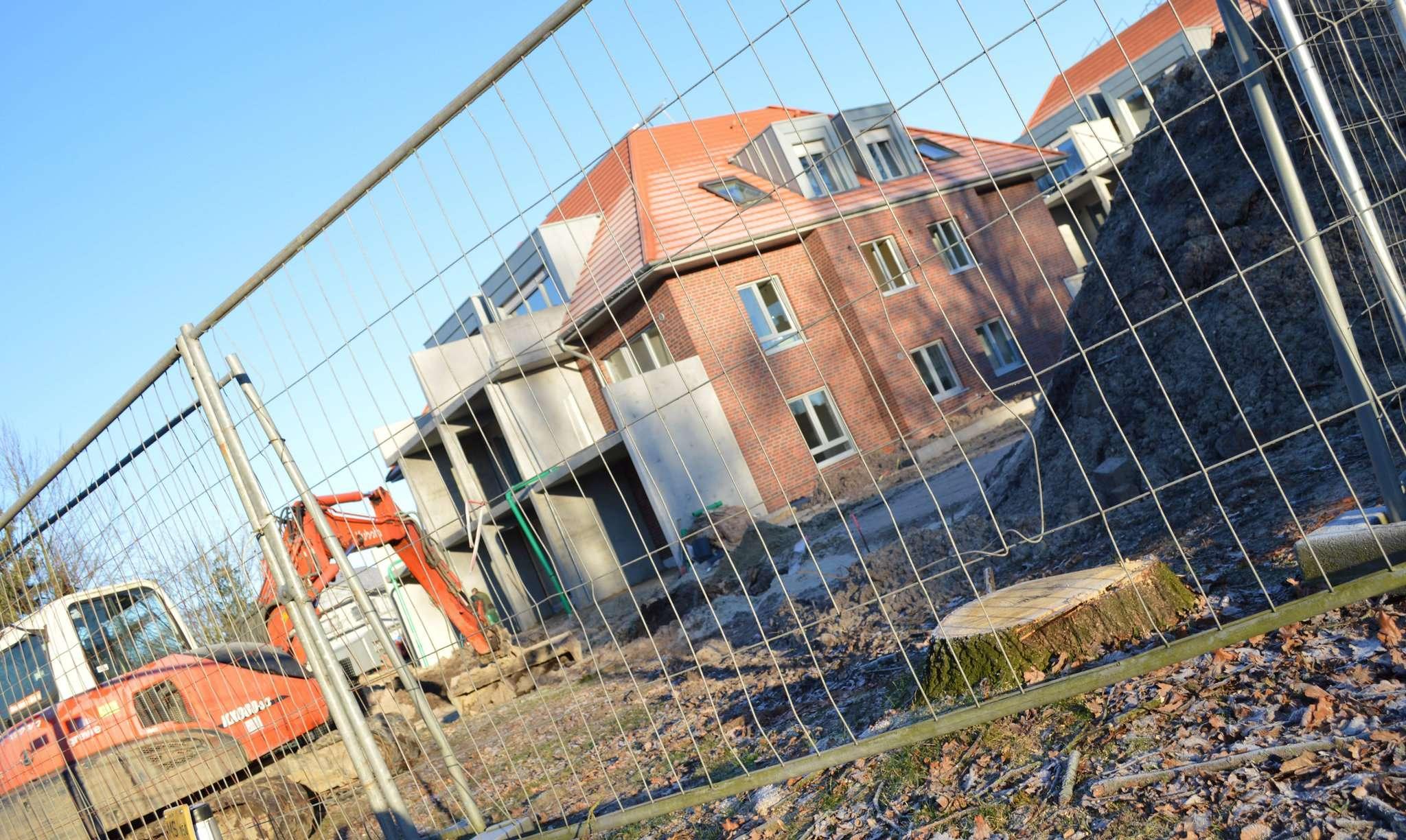 Stumpf des Anstoßes: Vier Bäume fielen im vergangenen Jahr rund um das Bauprojekt