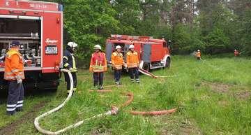 Feuerwehren proben den Ernstfall im Luhner Forst