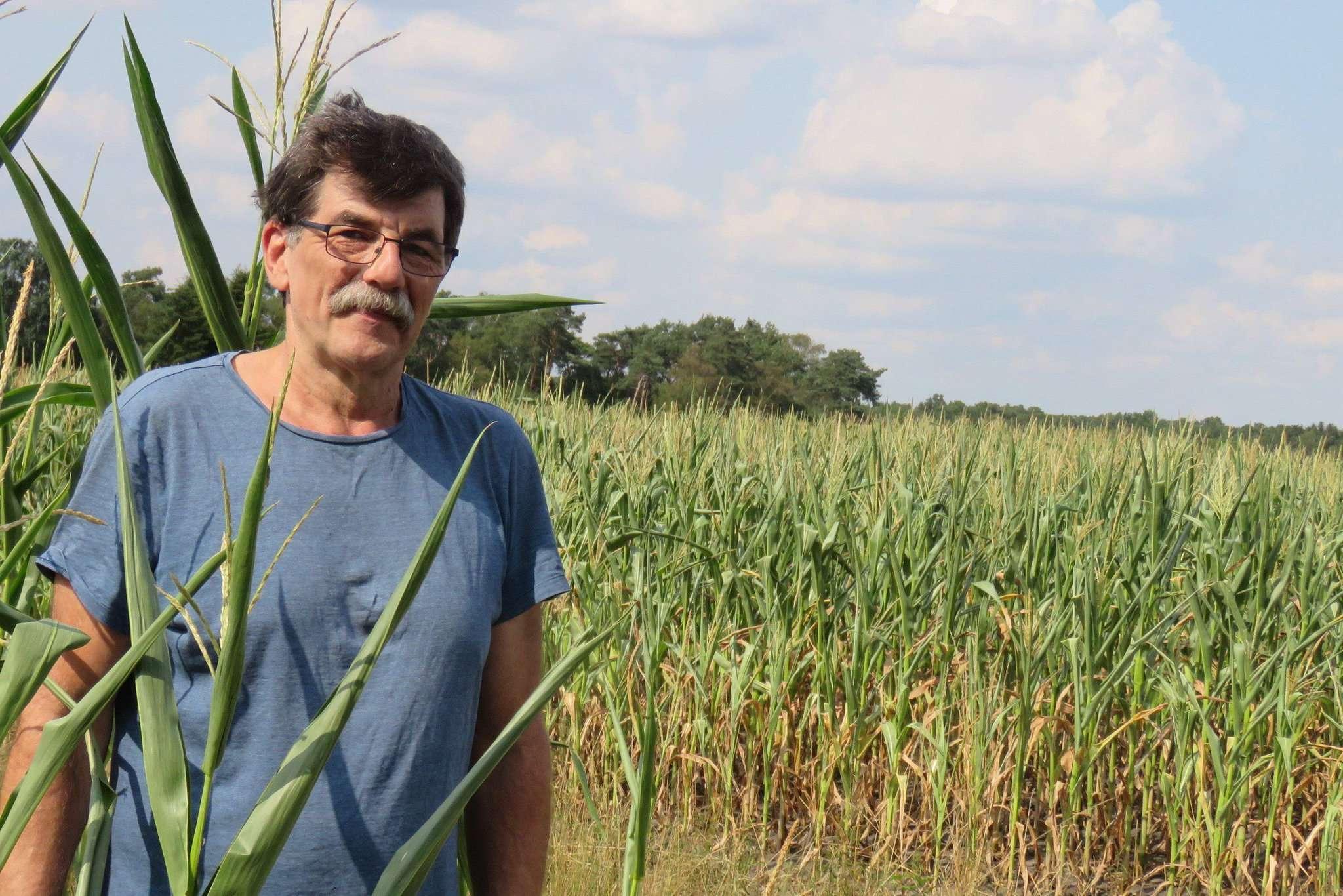 Peter Erfurt will mithilfe einer Bürgerblumenwiese die Monokultur durchbrechen und so Lebensraum sowie Nahrung für Insekten schaffen. Er sucht Pächter für das Projekt.