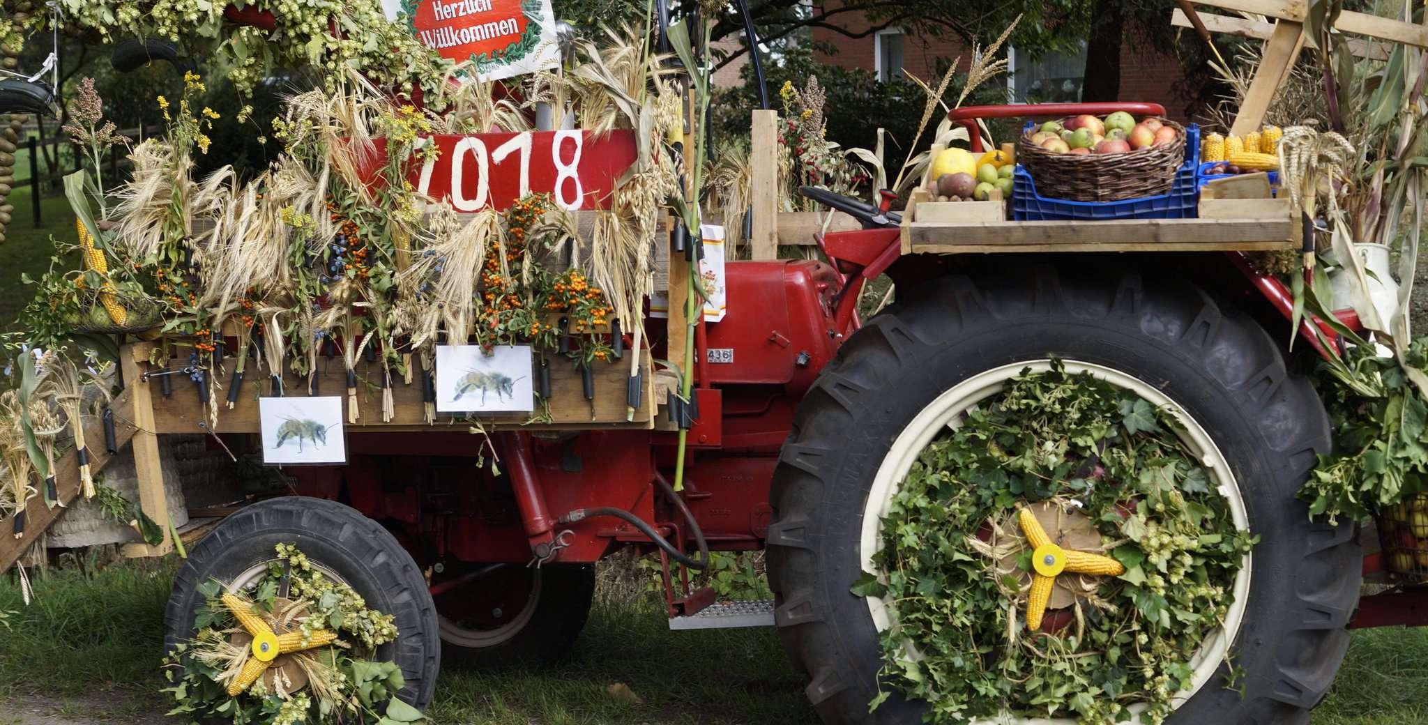 Bei der Dekoration von Erntewagen haben sich die Teilnehmer schon im vergangenen Jahr viel Mühe gegeben. Damit können die Besucher auch bei der aktuellen Auflage rechnen.