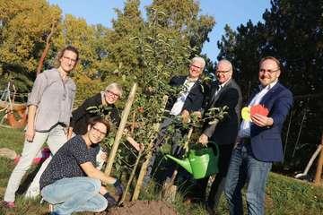 Präventionsrat pflanzt Apfelbaum auf den Visselwiesen