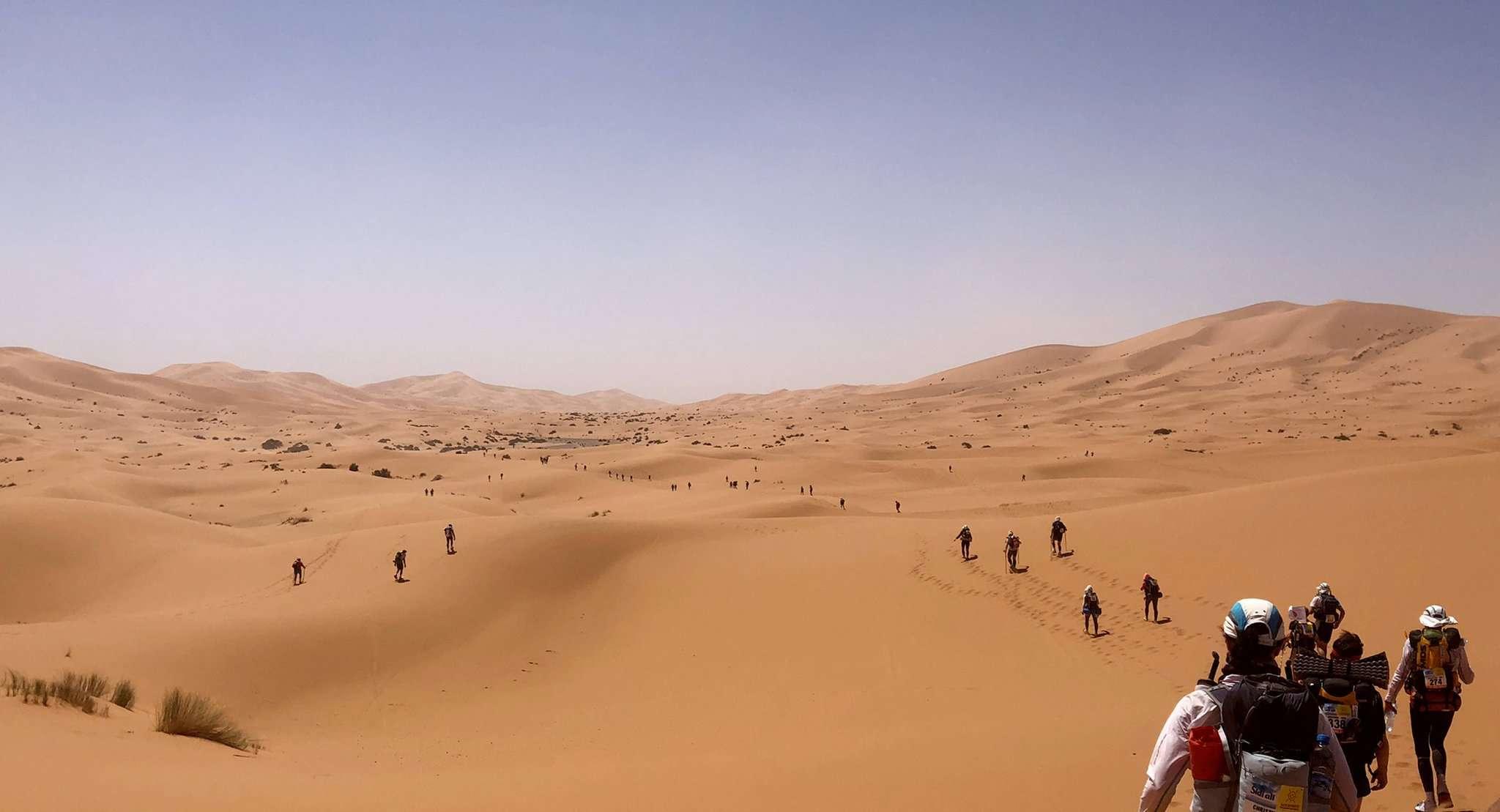 Die Routen beim Marathon des Sables führen durch ausgedehnte Dünenfelder. Foto: Frank Akens