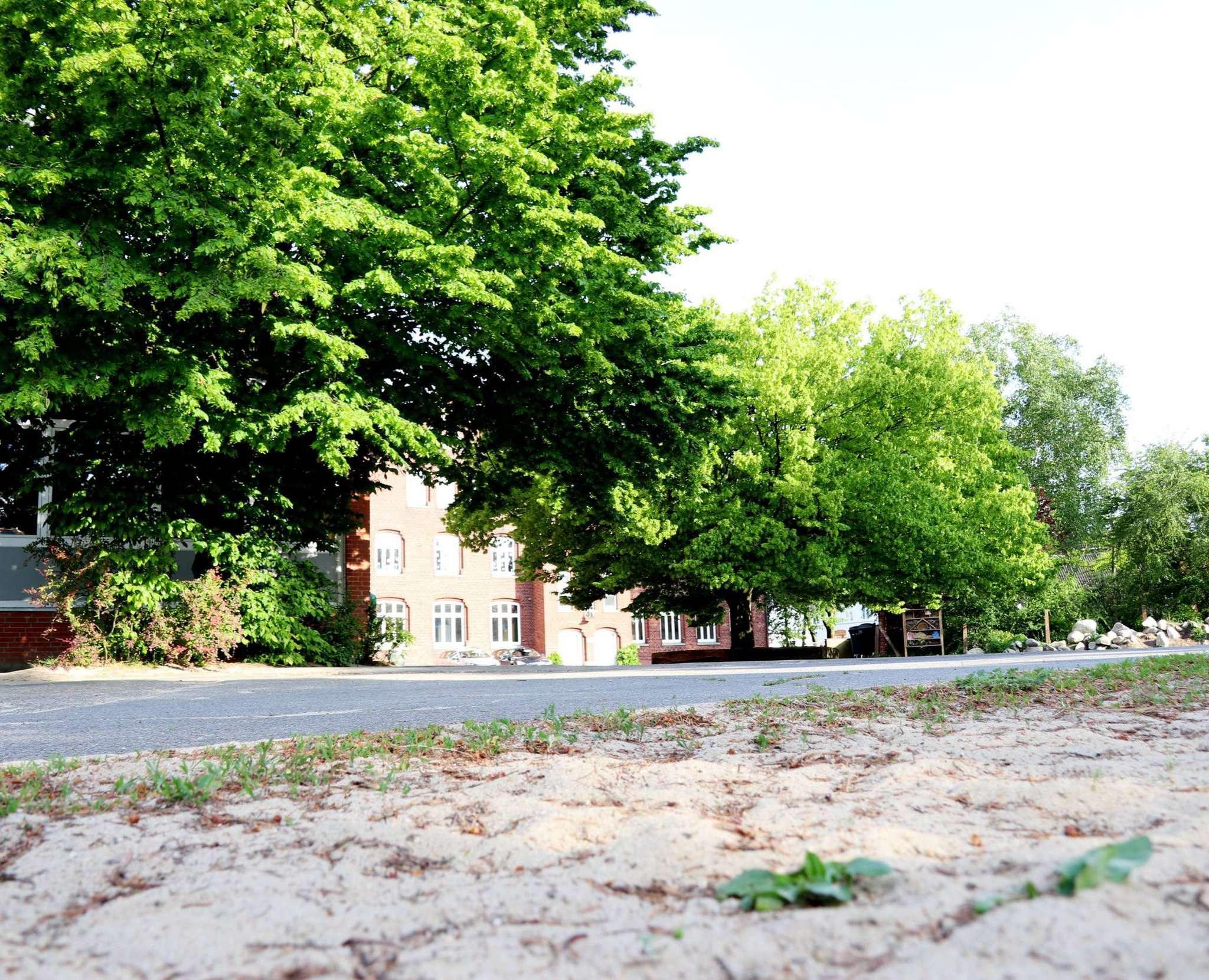 Auf den Schulhof der Kastanienschule sollen bereits in den Sommerferien Veränderungen zukommen u2013 geht es nach den Planungen der Stadt. Foto: Nina Baucke
