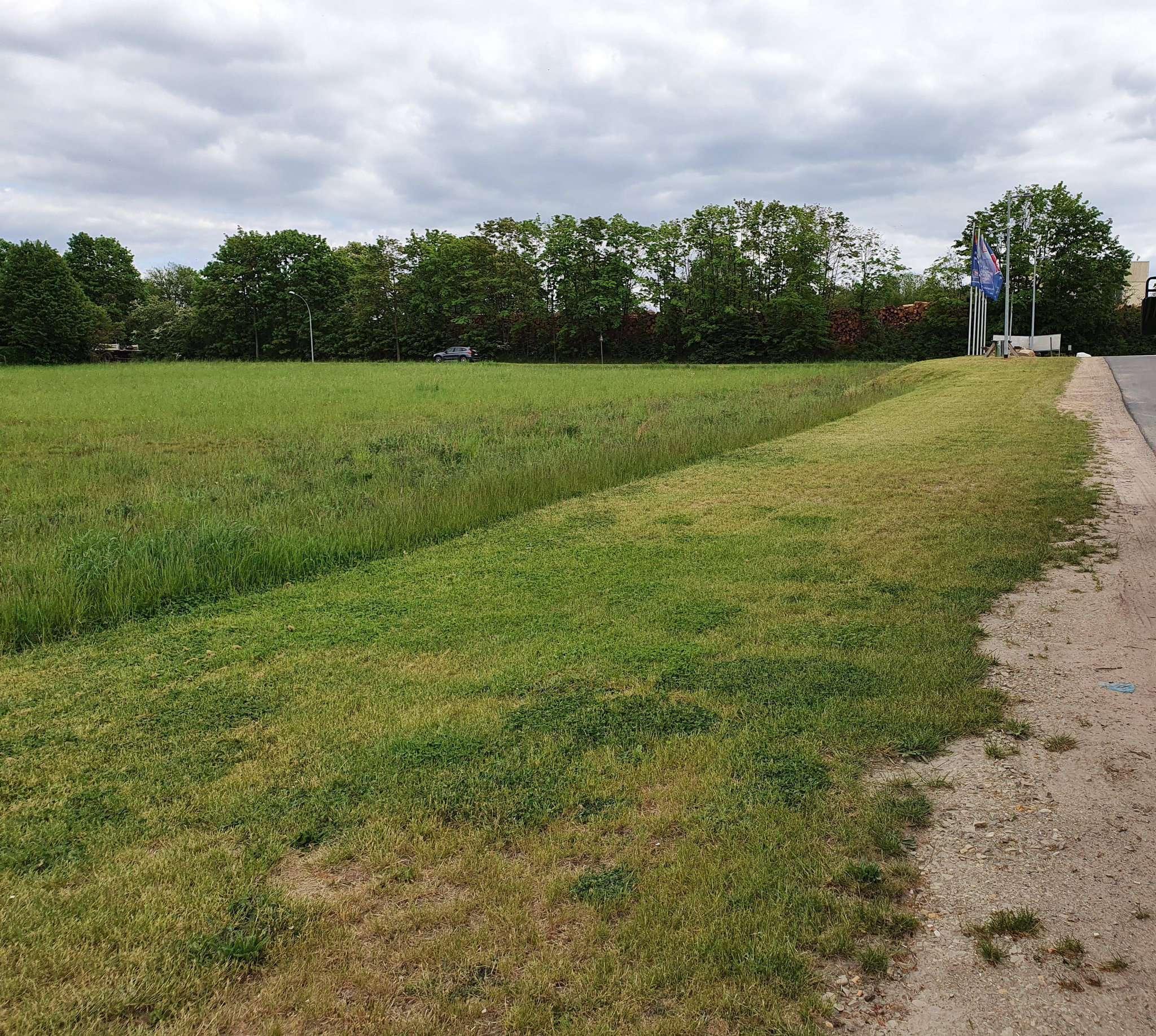 Unter anderem an der Verdener Straße will die Stadt ein neues Baugebiet ausweisen.
