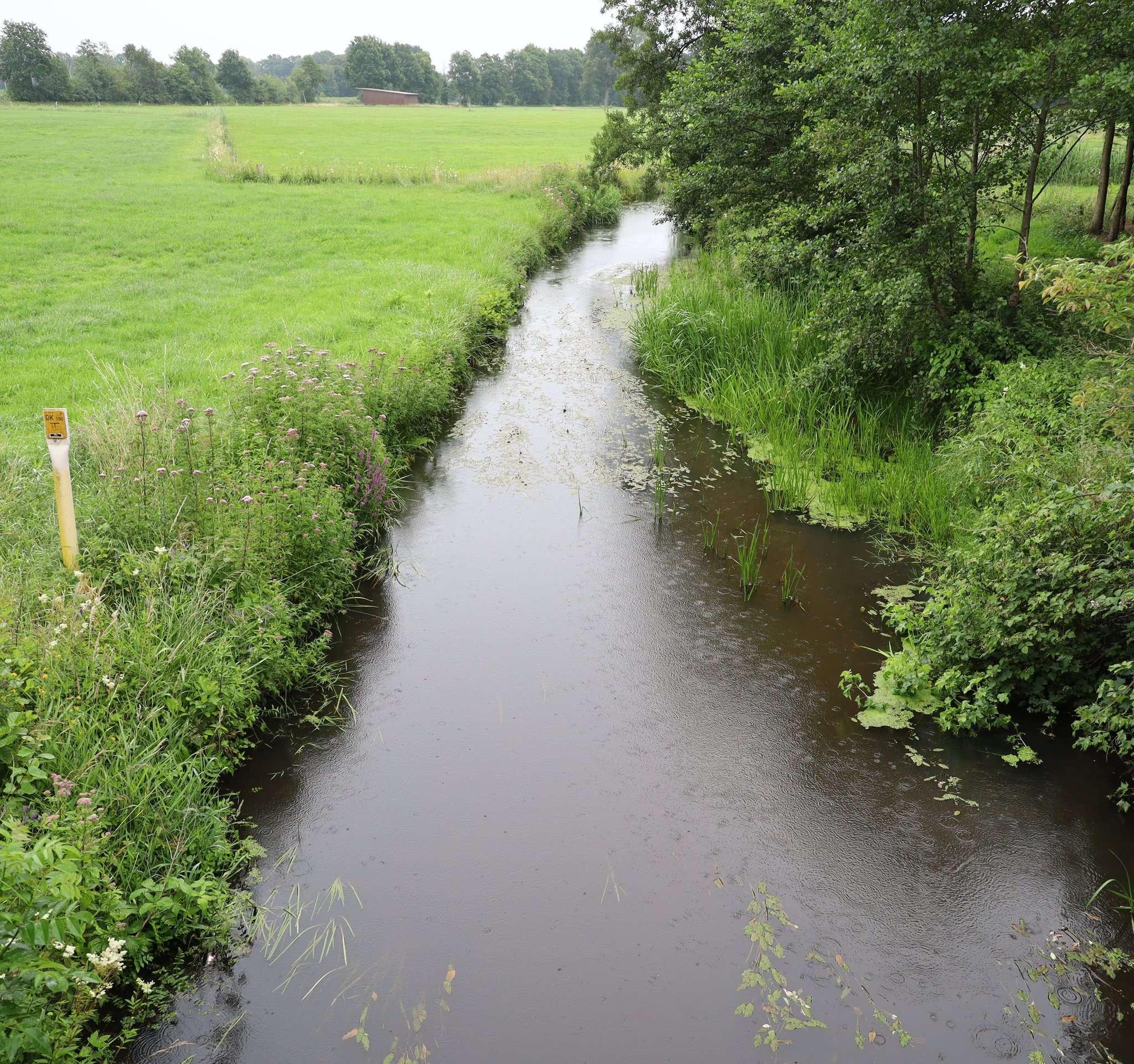 Die Wiedau, hier bei Bothel, ist weniger mit Nitrat belastet als andere Gewässer der Samtgemeinde. Foto: Henning Leeske