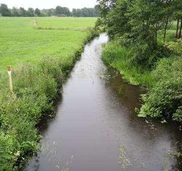 Samtgemeinde Bothel lässt Gewässerqualität überprüfen