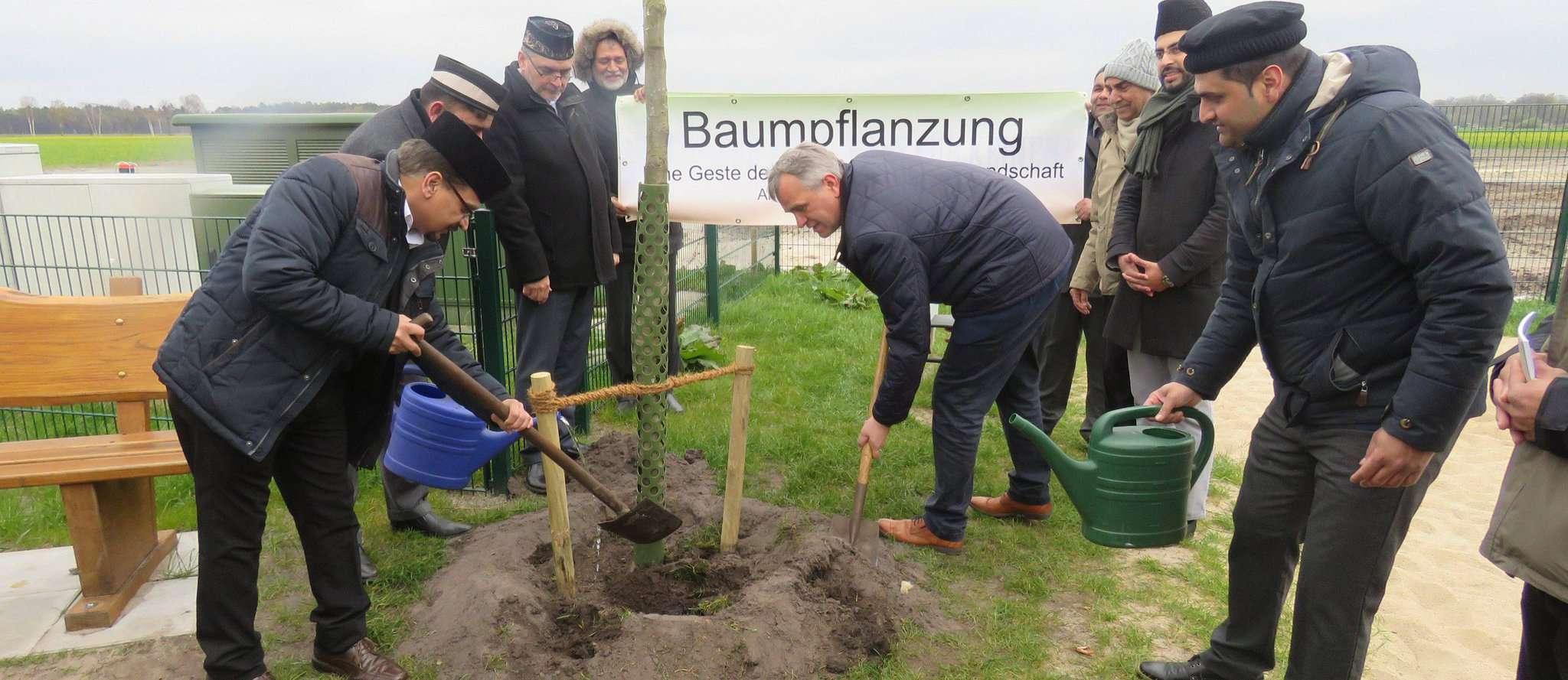 Posthausens Ortsbürgermeister Reiner Sterna (Mitte) legte bei der Pflanzung persönlich Hand an. Foto: Elke Keppler-Rosenau