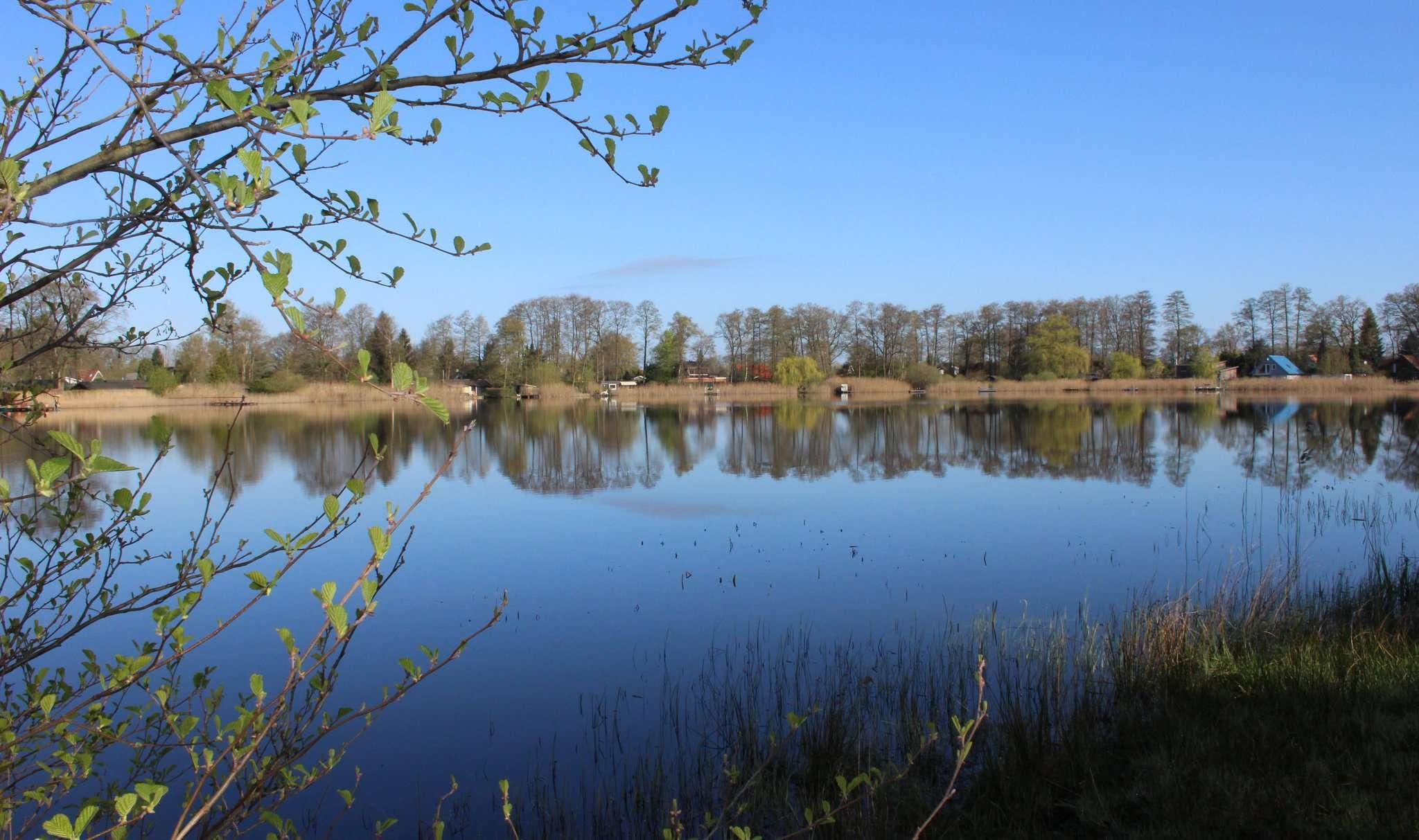 Der Otterstedter See, oder besser die Algen darin, beschäftigen den Ortsrat am kommenden Montag. Foto: Björn Blaak