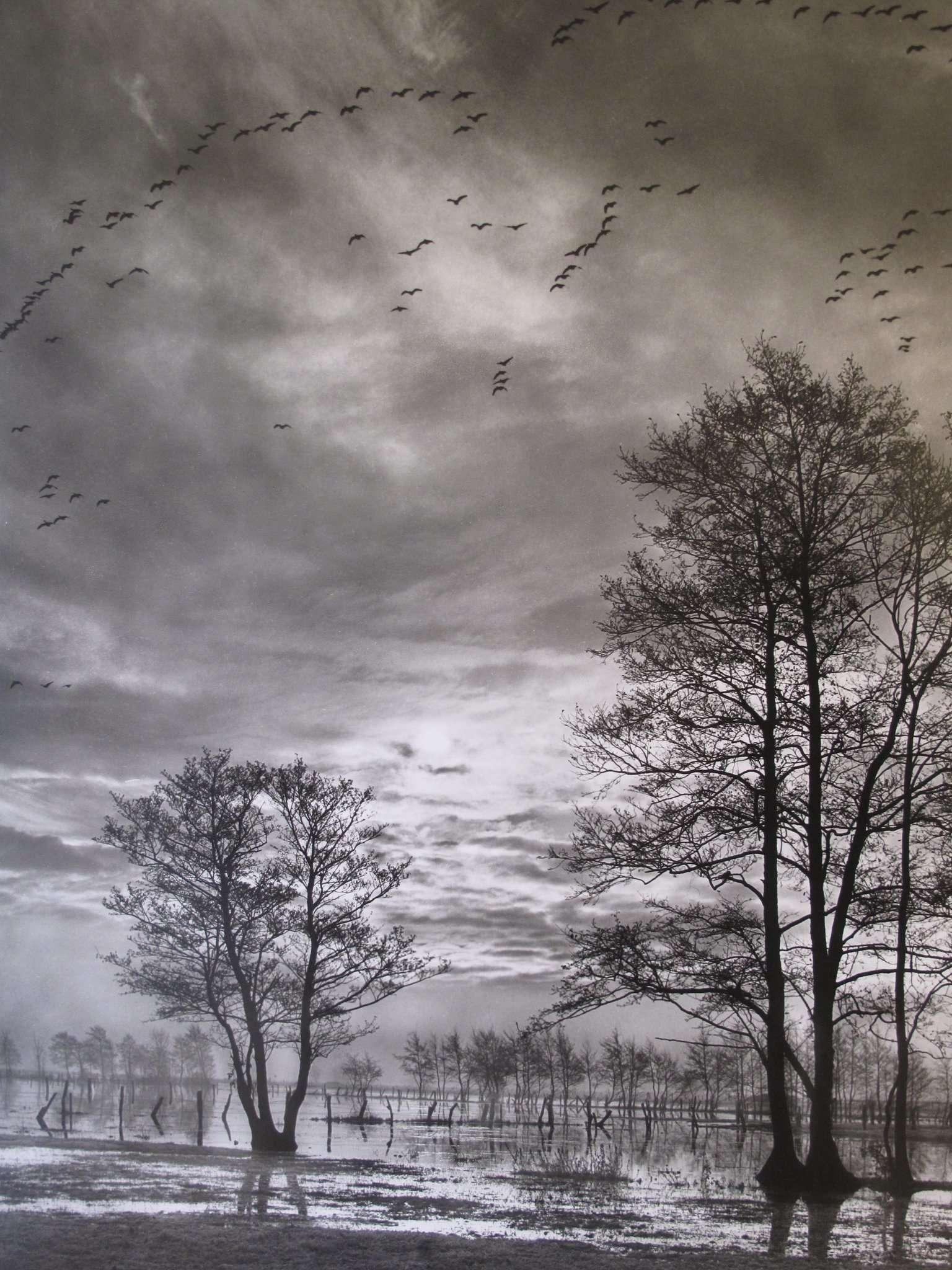 Ein Foto wie ein Gemälde. Klaus Rohmeyer fotografierte seine Heimat unzählige Male.