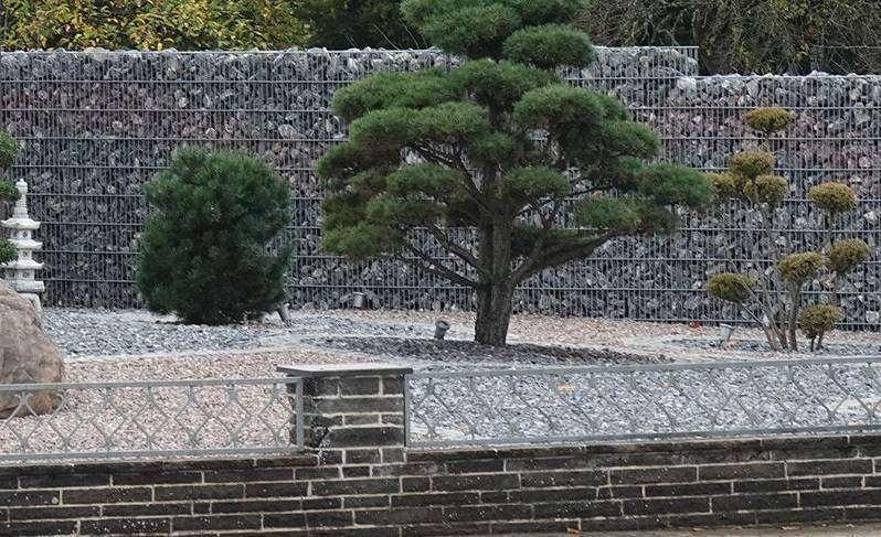 Mehr Stein als Garten ist für Satiriker Gerd Geiser diesmal der Stein des Anstoßes. Foto: Elke Keppler-Rosenau