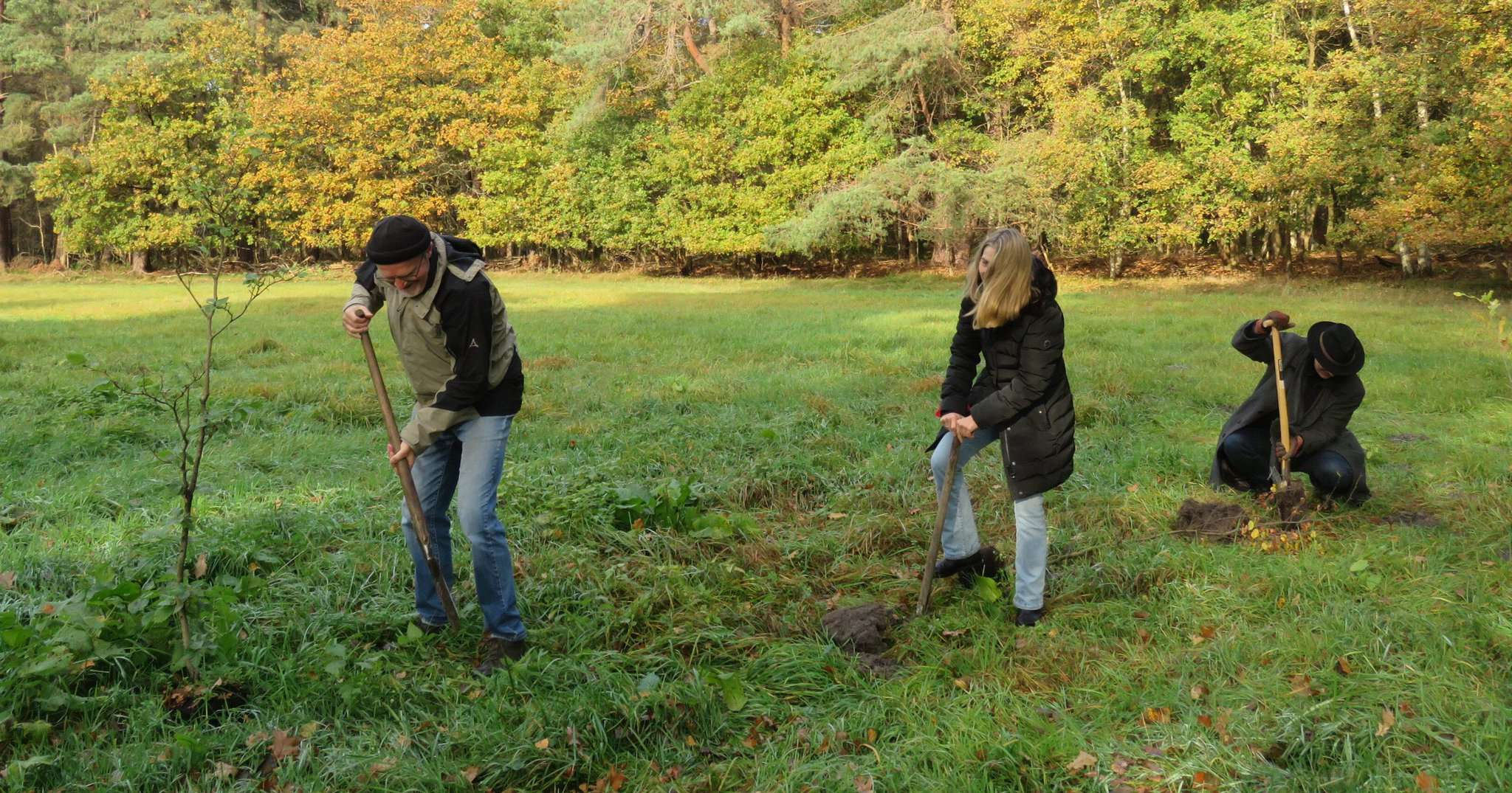 Erich von Hofe (von links), Bettina Schwing und Tim Willy Weber pflanzten Bäume in der Quelkhorner Surheide. Foto: Elke Keppler-Rosenau