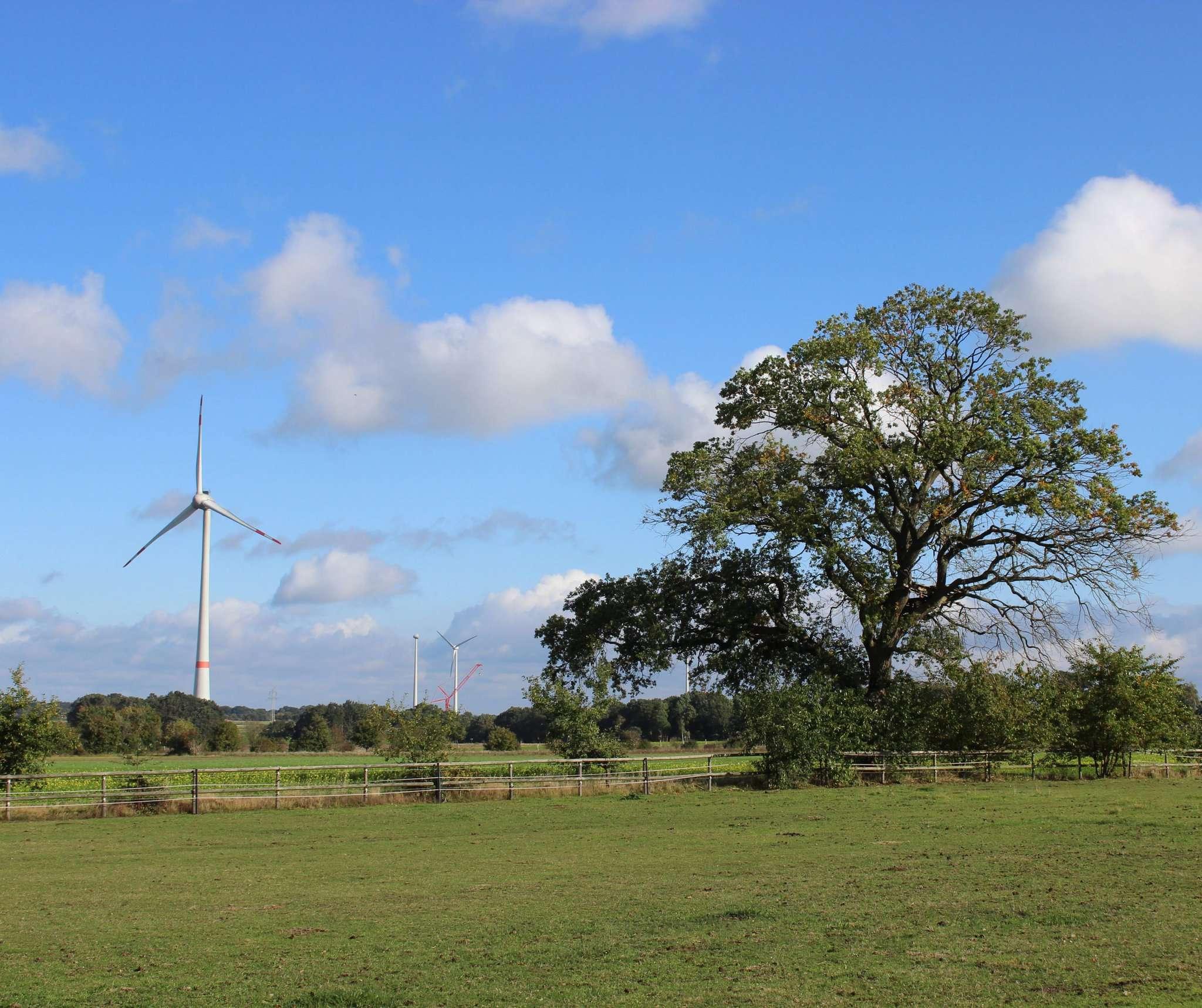 Unweit dieser Windenergieanlage in Quelkhorn sollen 2021 zwei weitere und rund 200 Meter hohe Anlagen in Betrieb genommen werden.  Foto: Björn Blaak