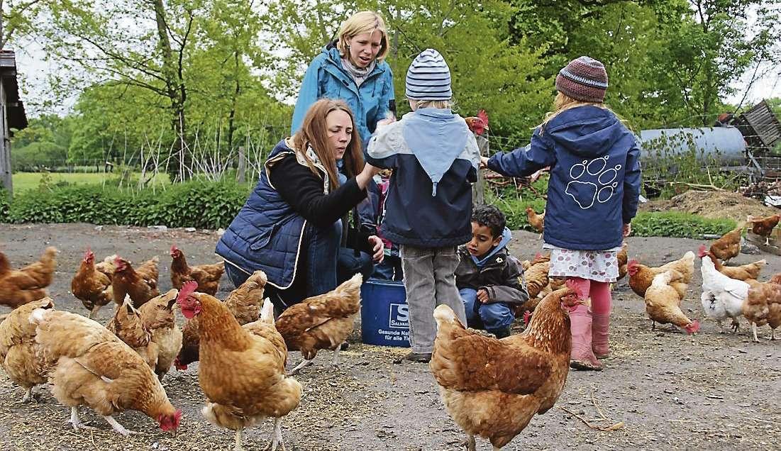 Mitten im Geschehen: Erzieherin und Hofbesitzerin Bente Wiencke (in der Hocke) bringt Kindern im Bauernhofkindergarten das Leben mit Tieren und Natur nahe.